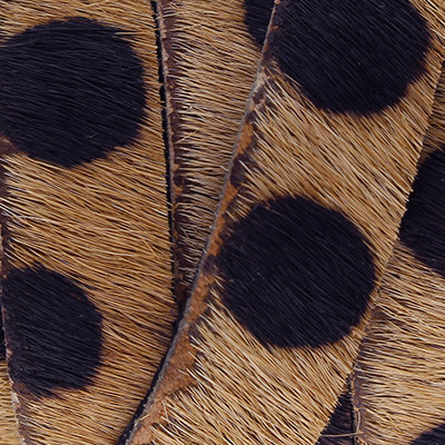 flaches Lederband aus Kuhfell 5x2mm - LEOPARD, glatte Rückseite aus Nappaleder